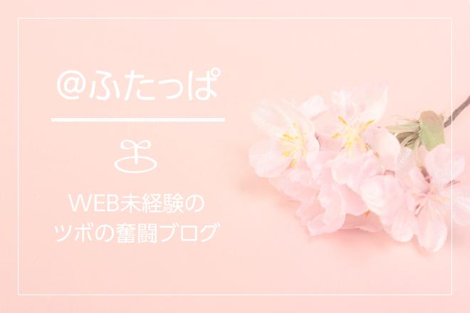 WEB未経験者のドキドキのインターンブログ!